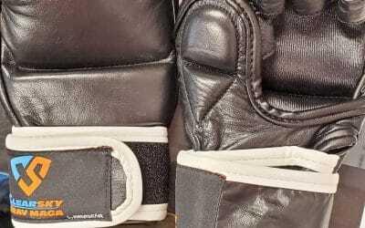 Kids MMA Gloves Pre Sale